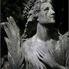 Melatenfriedhof Köln 7