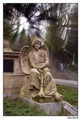 Melatenfriedhof V