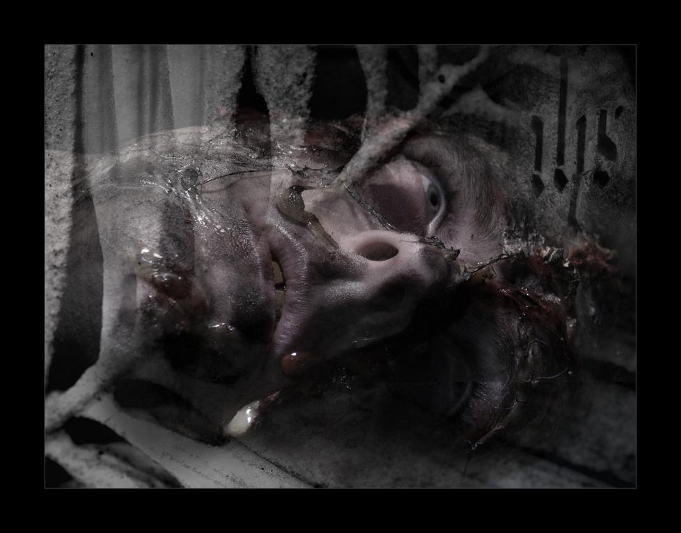 Memento mori II