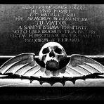 - memento mori (VI) -