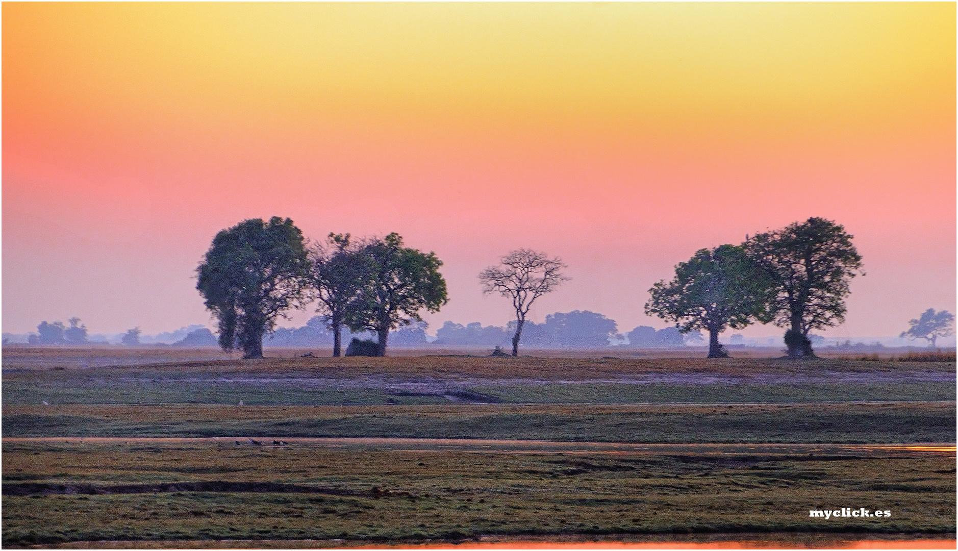 MEMORIAS DE AFRICA-AMANECER EN PN DE CHOBE -BOSTWANA