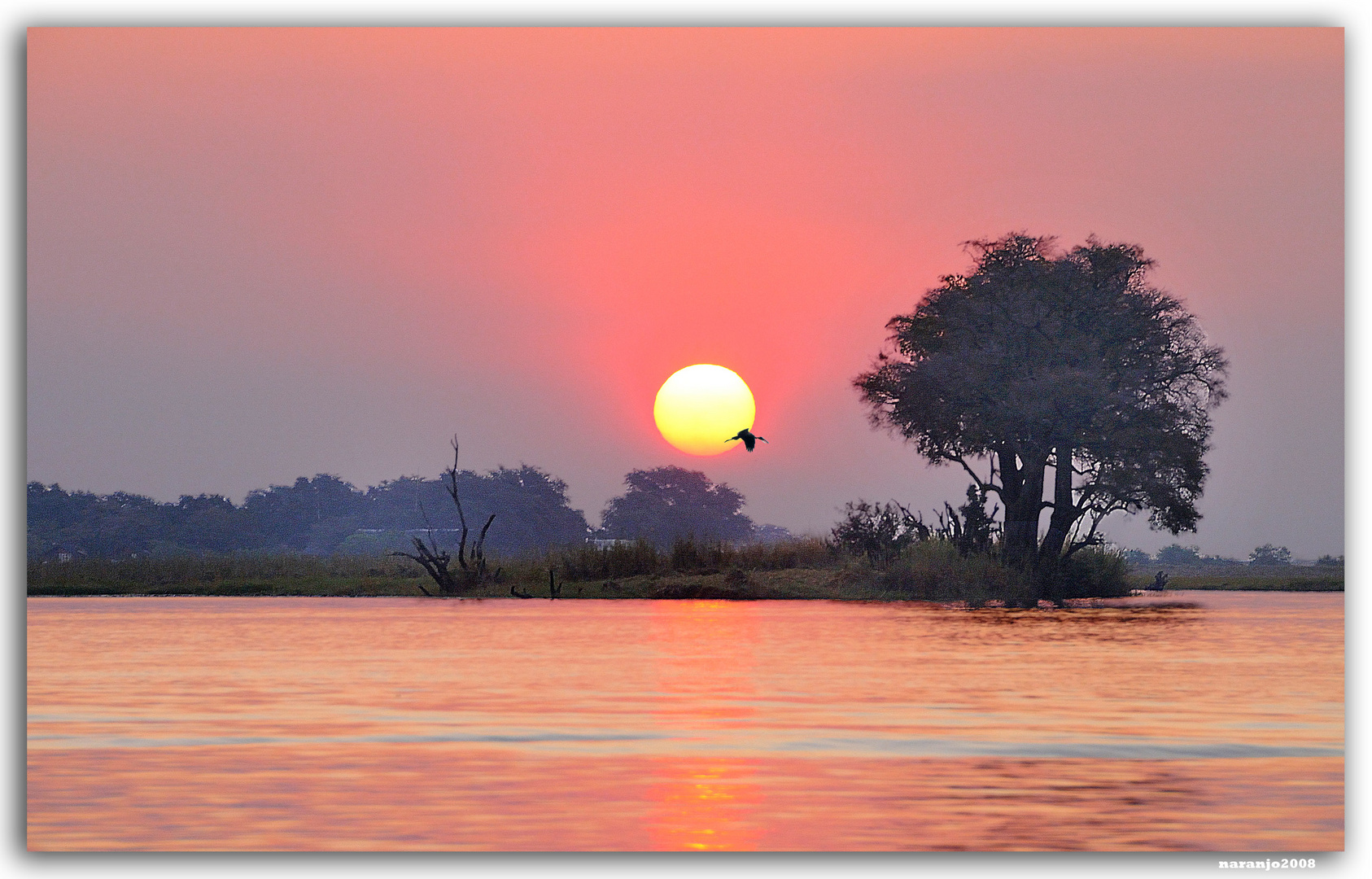 MEMORIAS DE AFRICA -ATARDECER EN EL ZAMBEZE -BOSTWANA