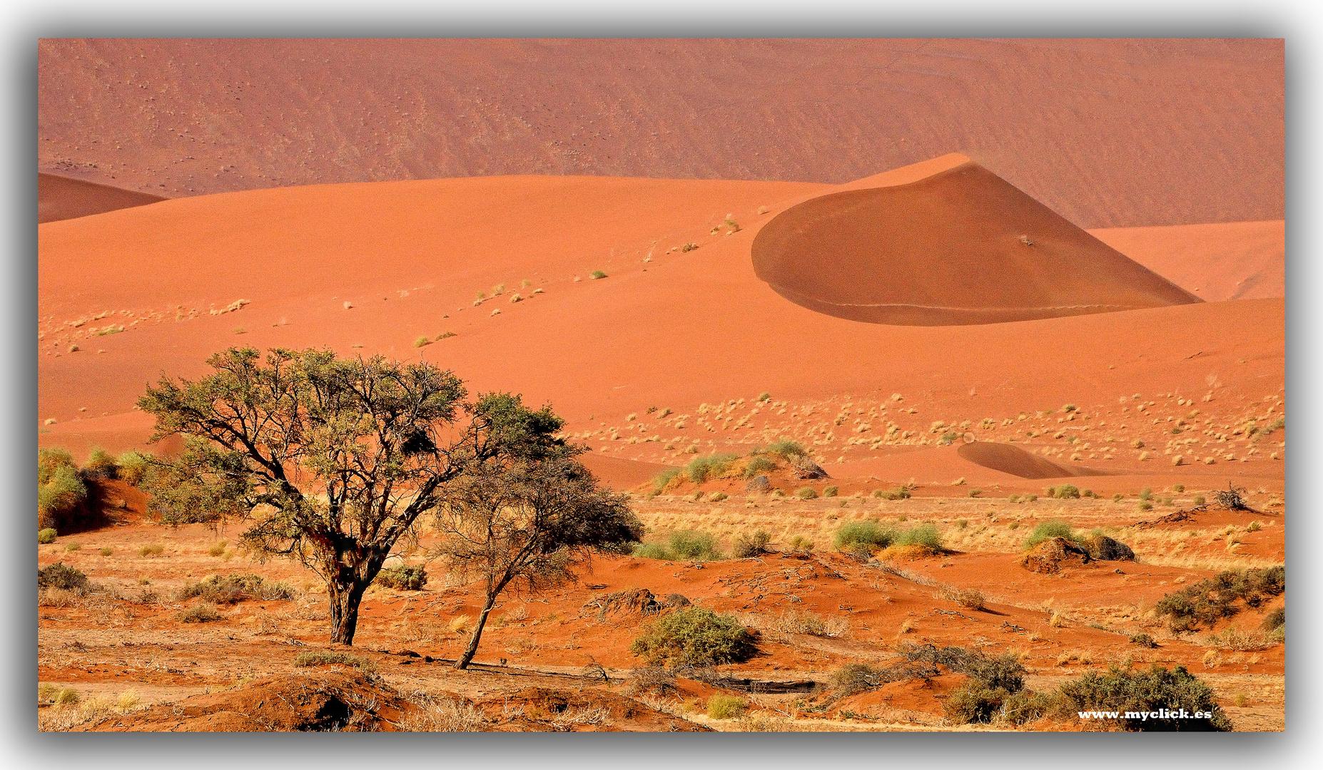 MEMORIAS DE AFRICA-LAS DUNAS DE SOSSUSVLEI -3 -NAMIBIA