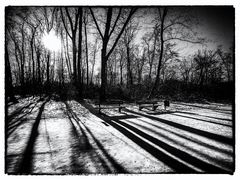 Memory of a winter