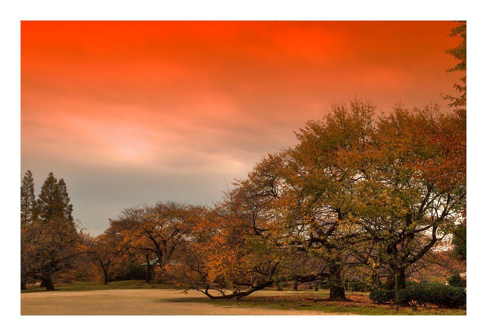 Memory of Autumn 2012