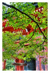 Memory of Kyoto -VI