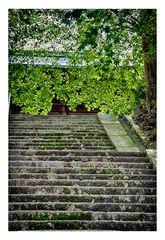 Memory of Kyoto -VII