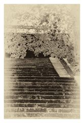 Memory of Kyoto -VIII