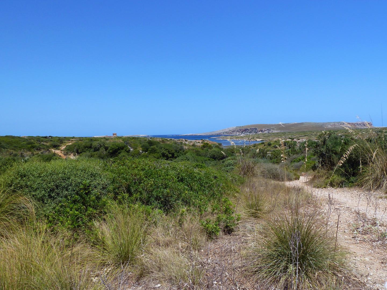 Menorca Impressionen - Inseleindrücke (205)