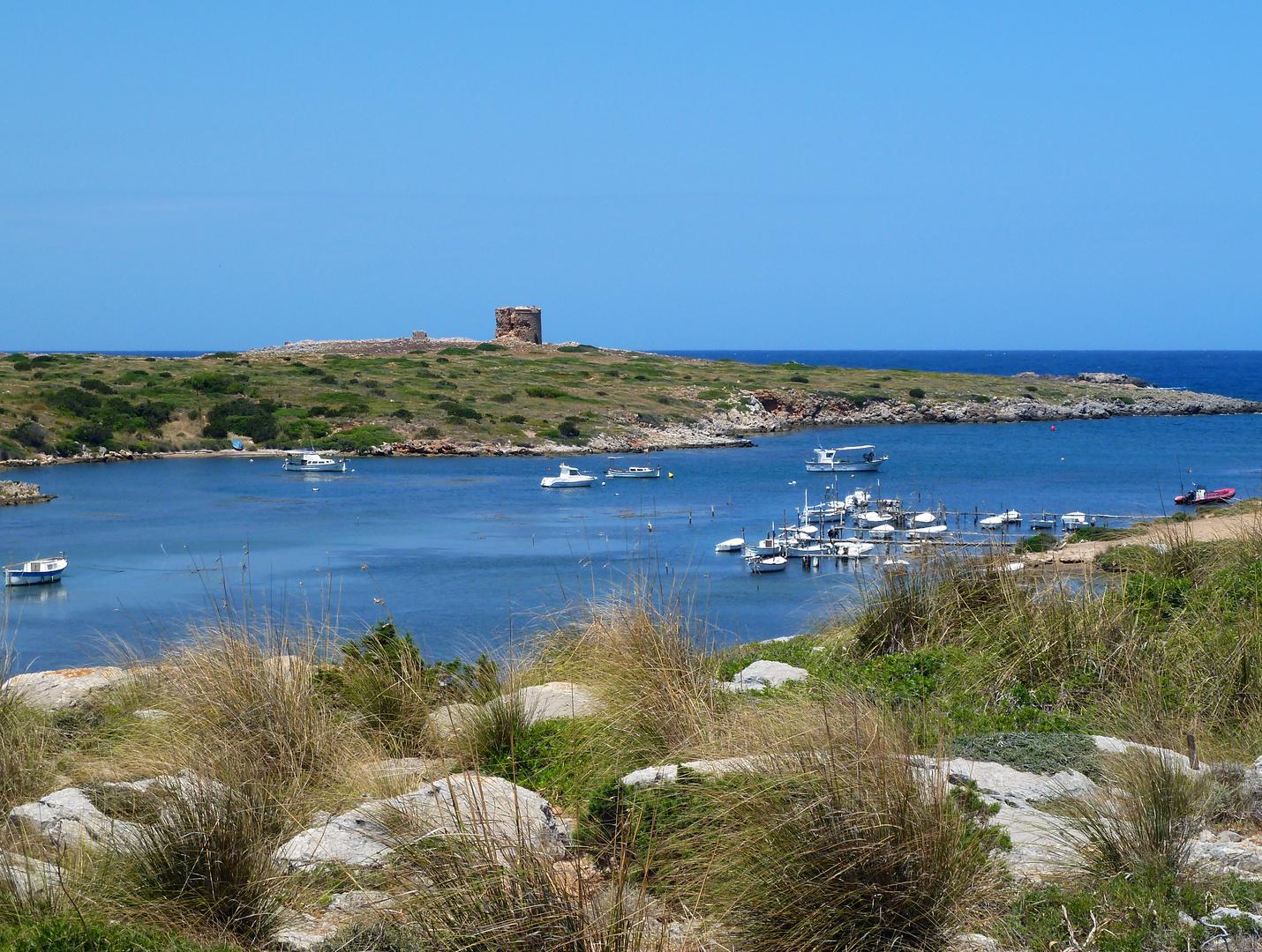Menorca Impressionen - Inseleindrücke (208)