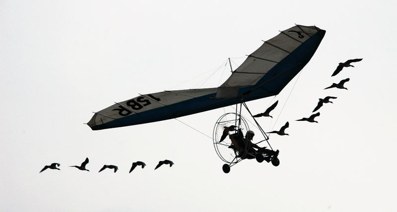 Fluggerät