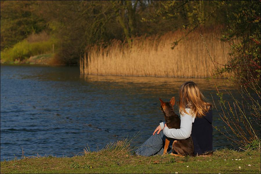 Mensch-Hund-Beziehung