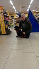 Mensch Hund Einkauf 1