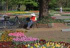 Menschen im Park