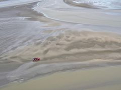 Menschen im Wattenmeer