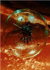 Menschen,Glas,Kugel mit Augen