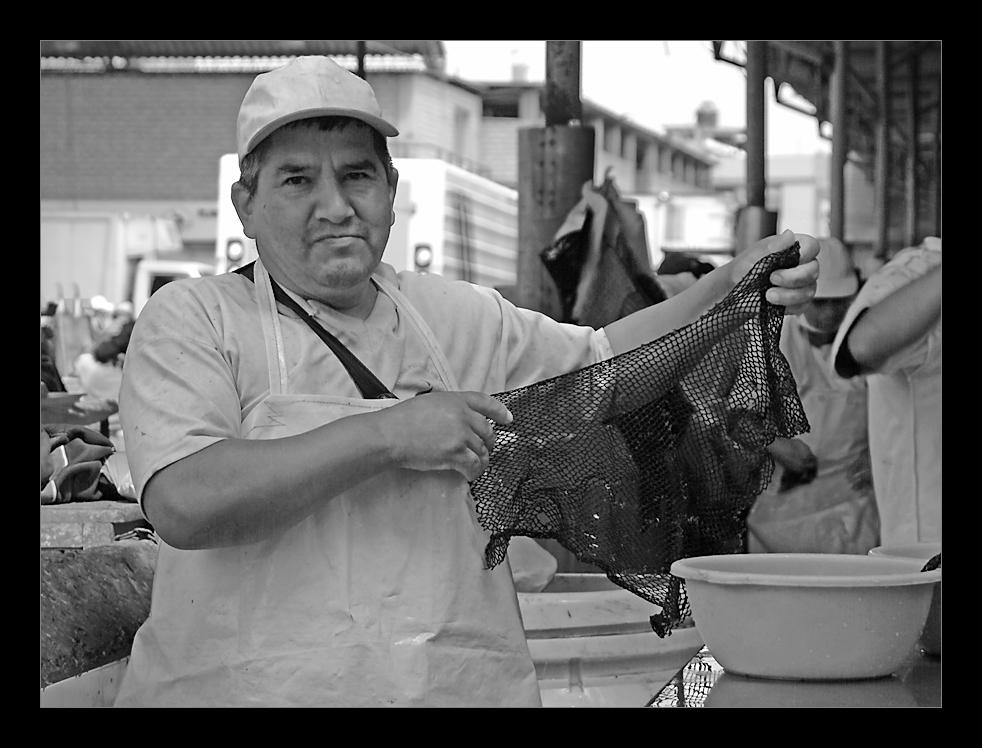 Mercado de pescado (1)