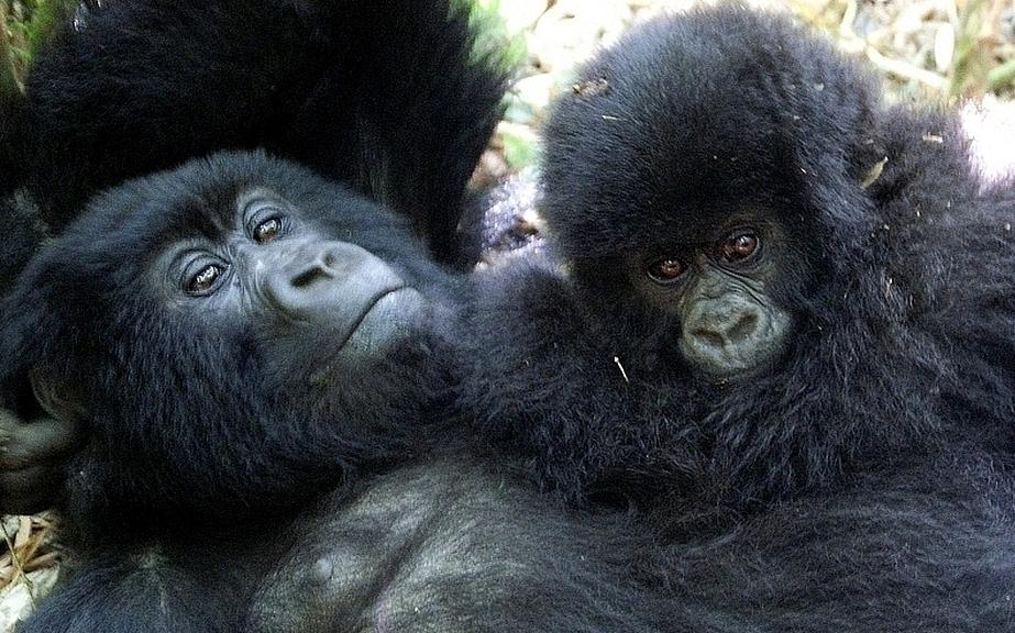Mère et enfant au Rwanda