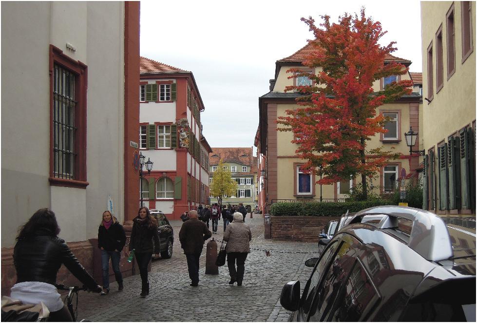 Merianstraße in Heidelberg