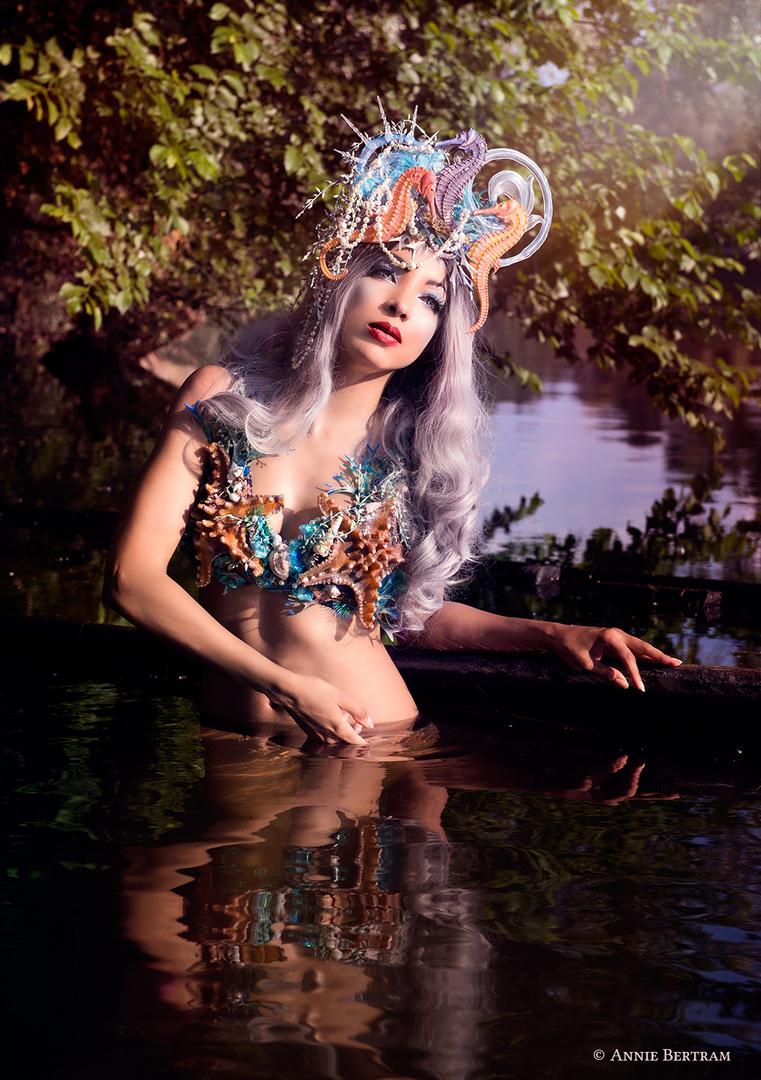 Mermaids Dream II