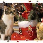 ** Merry Christmas **
