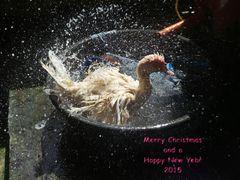 """ Merry Christmas... "" Pang-pang - Ibajay - Aklan - Panay 2014"