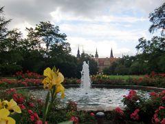 Merseburg (V) - Schlossgarten aus Sicht des Schlossgartensalons