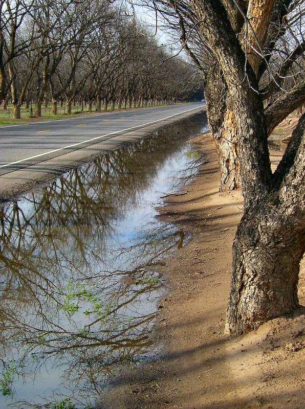Mesilla Valley - Stahmanns Pecan Farm am Highway 28