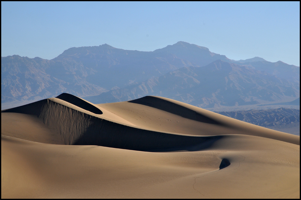 mesquite flats 1