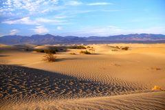 ...Mesquite Sand Dunes...