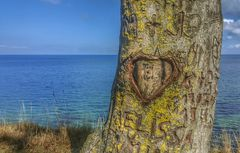 Messages d'arbre