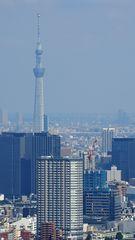 Metropolitan Tower 1