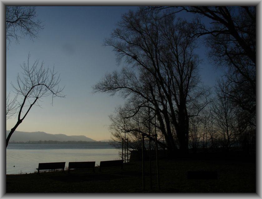 Mettnau am Bodensee im Januar