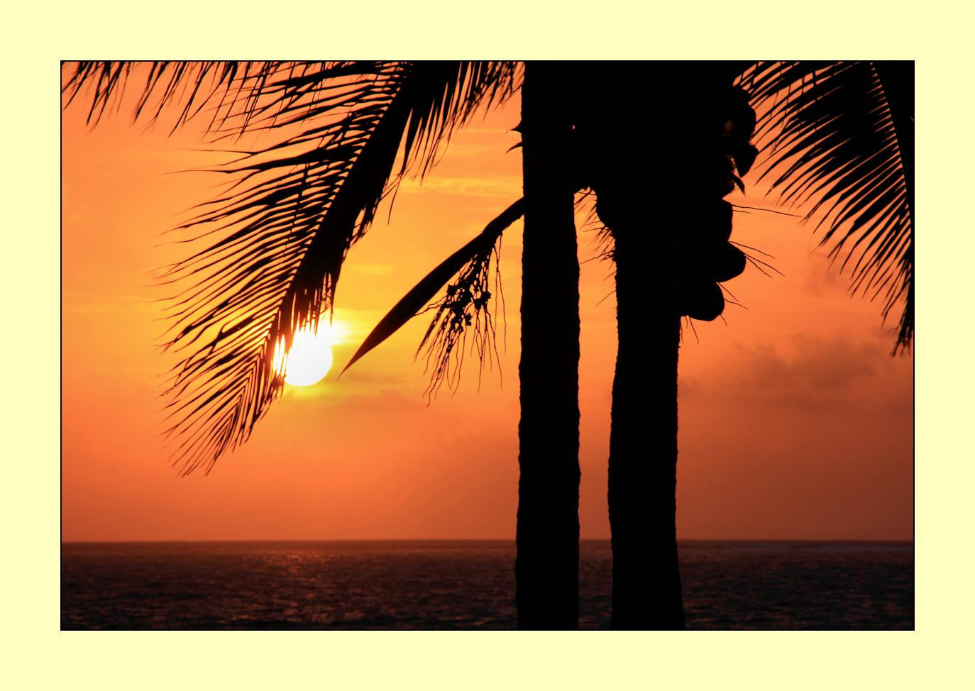 """mexican sunrise"""