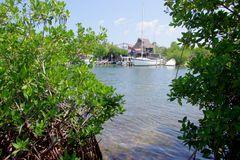 Mexique - l'Isla Mujeres - 7