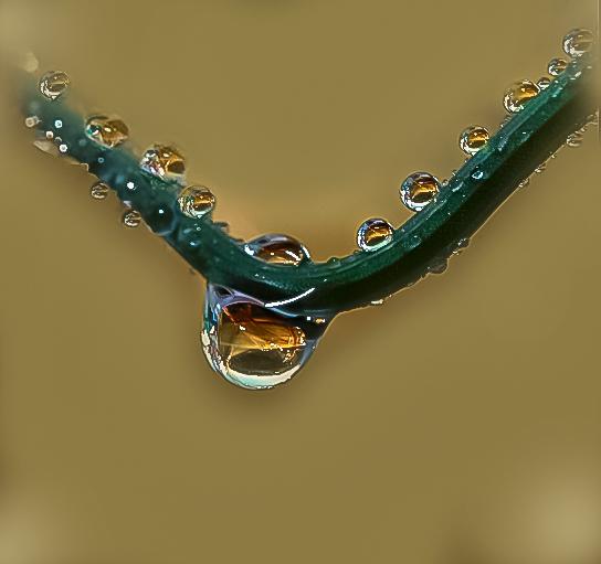 _MG_1382 Te regalo un collar de agua