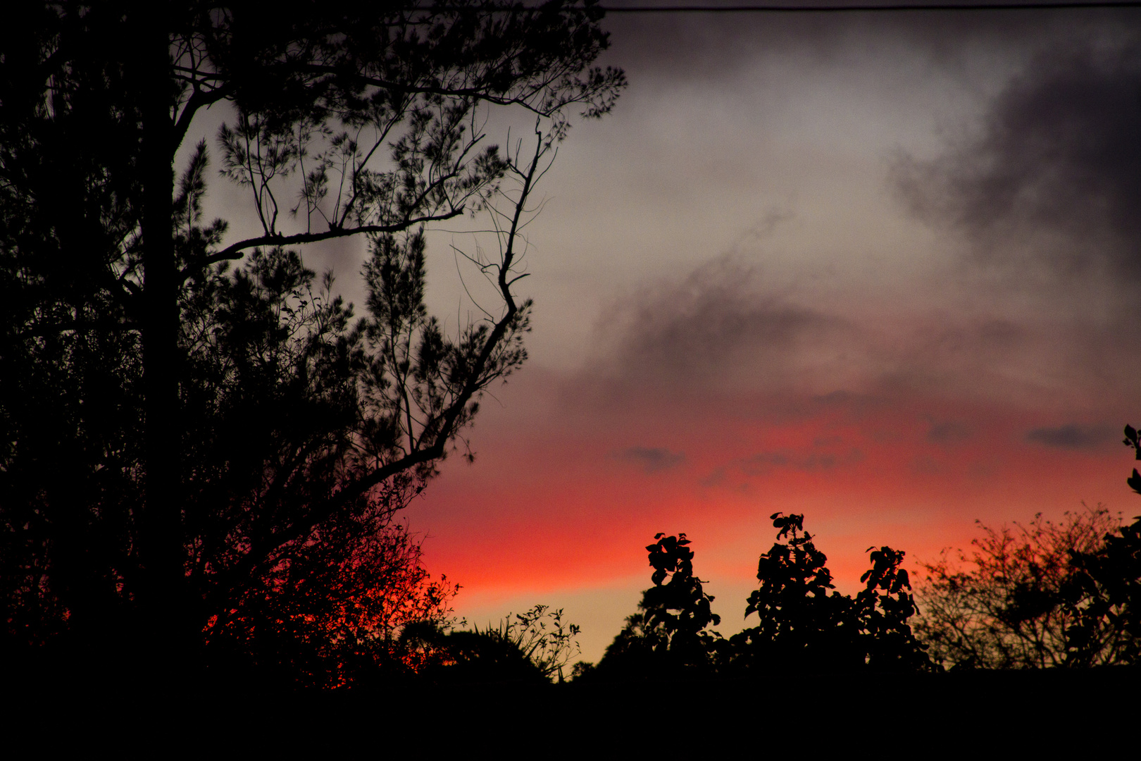 Mi hora azul, hora de tomar fotos y tiempo para meditar...