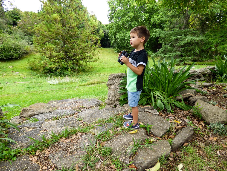 Mi pequeño nieto explora la naturaleza