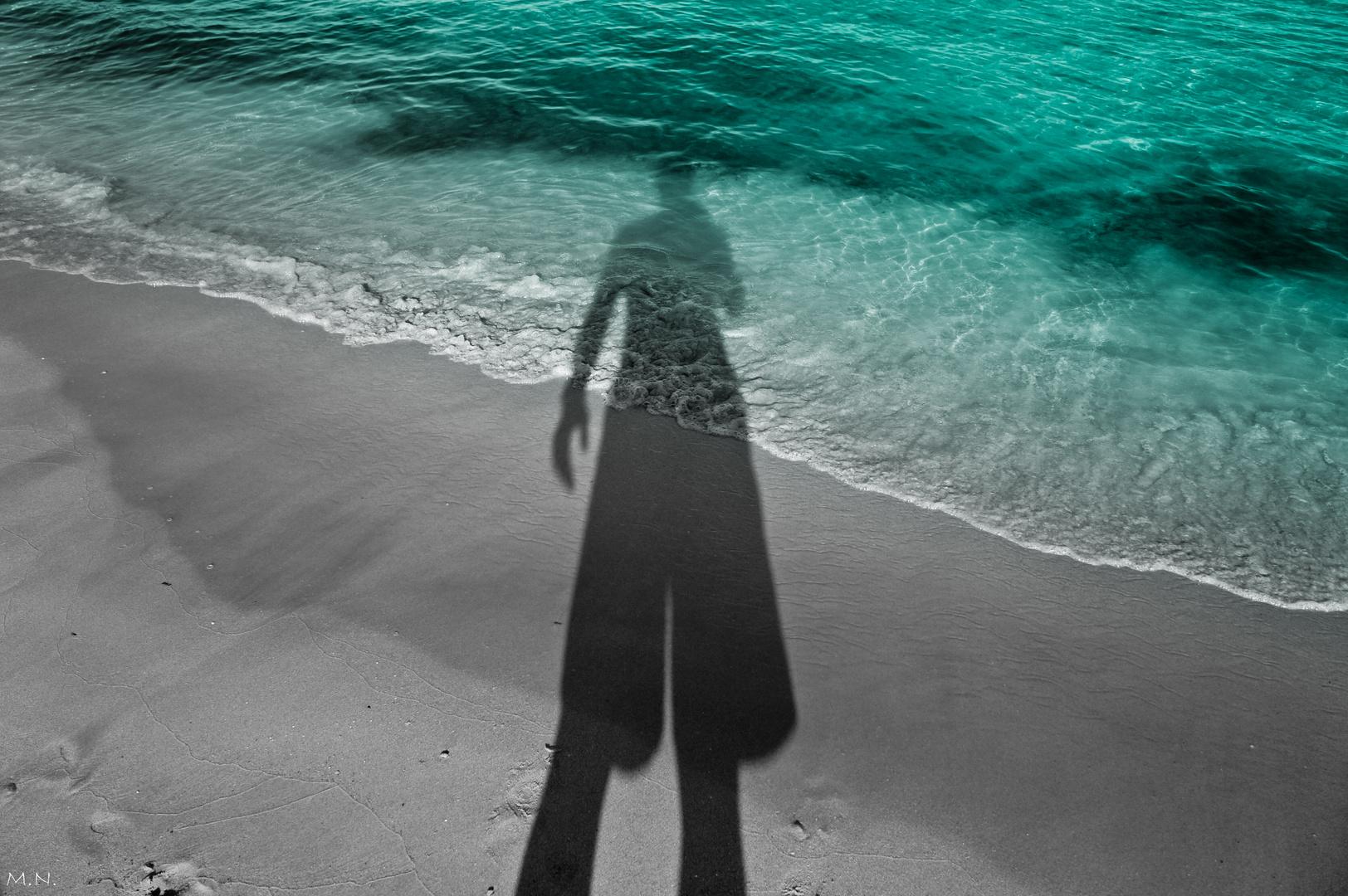 MI sombra I