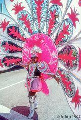 Miami Beach: Karneval (3)