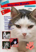 """""""Miau des Monats"""" Titelblatt"""