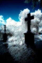 Michaelisfriedhof III