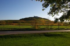 Michaelsberg/ Cleebronn Herbst 2013