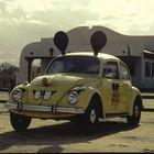Mickey Bug