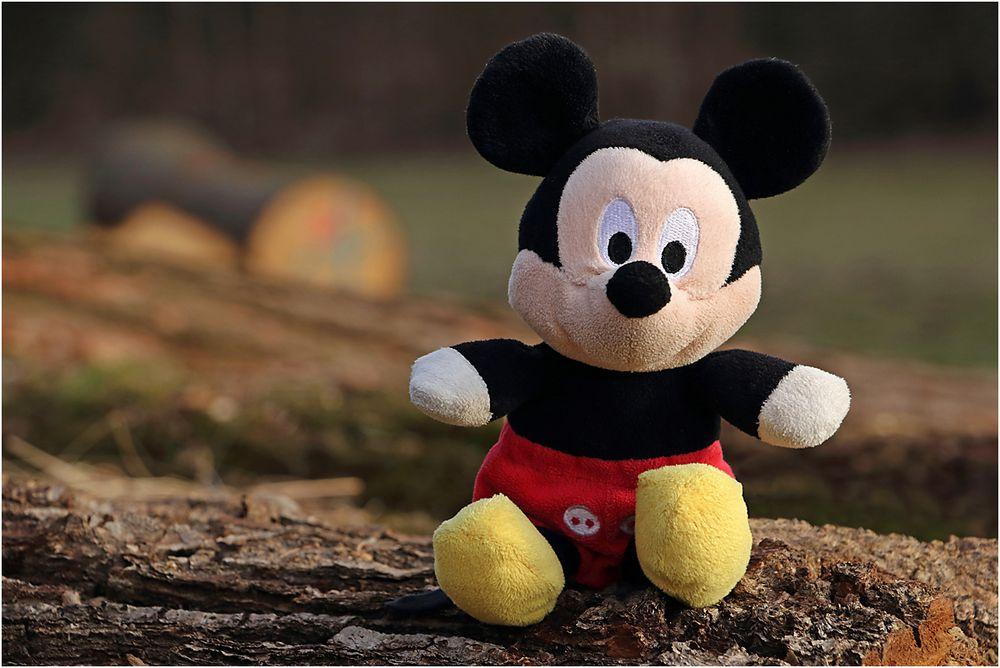 Micky Maus auf Reisen...