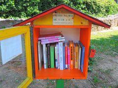 micro libreria