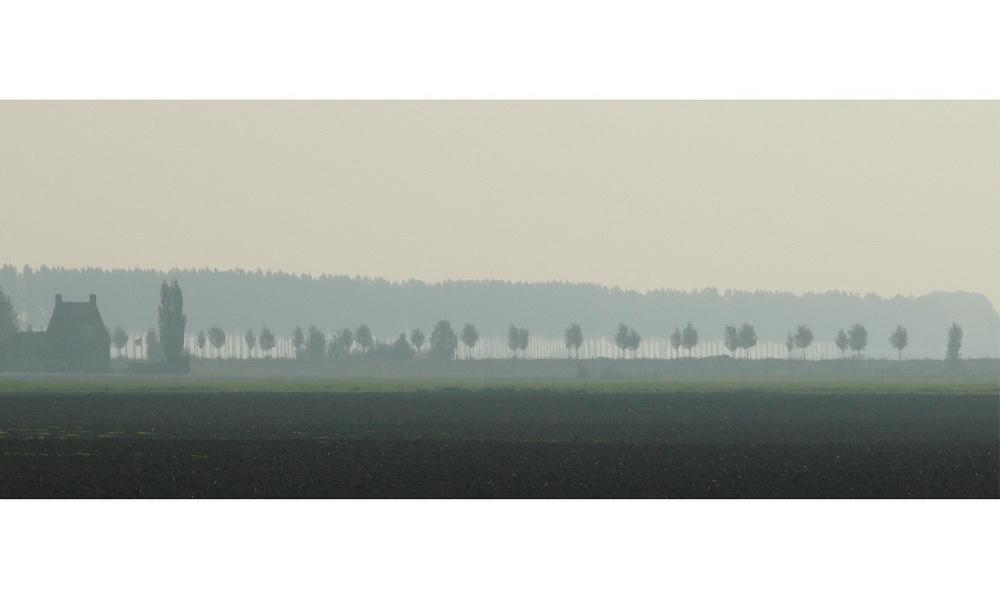 Midday fog (23.09.07) Zeeuws-Vlaanderen