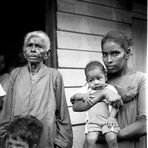 Migration - Sumatra