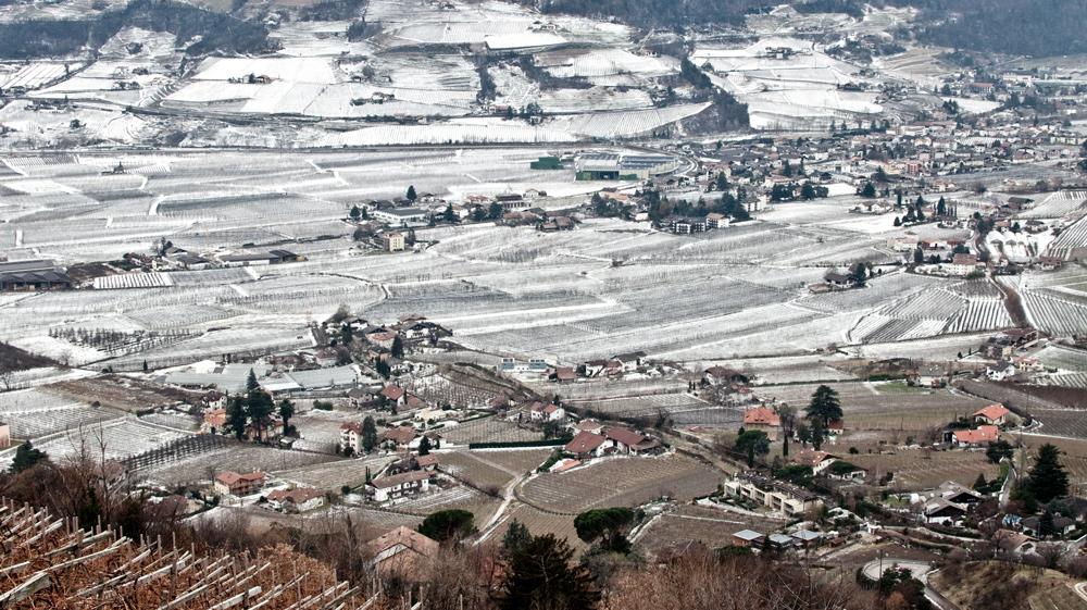 Milder Winter