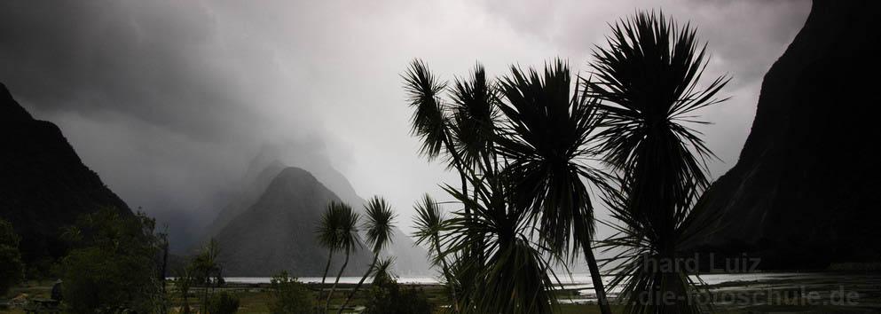 Milford Sound (im typischen Wetter)